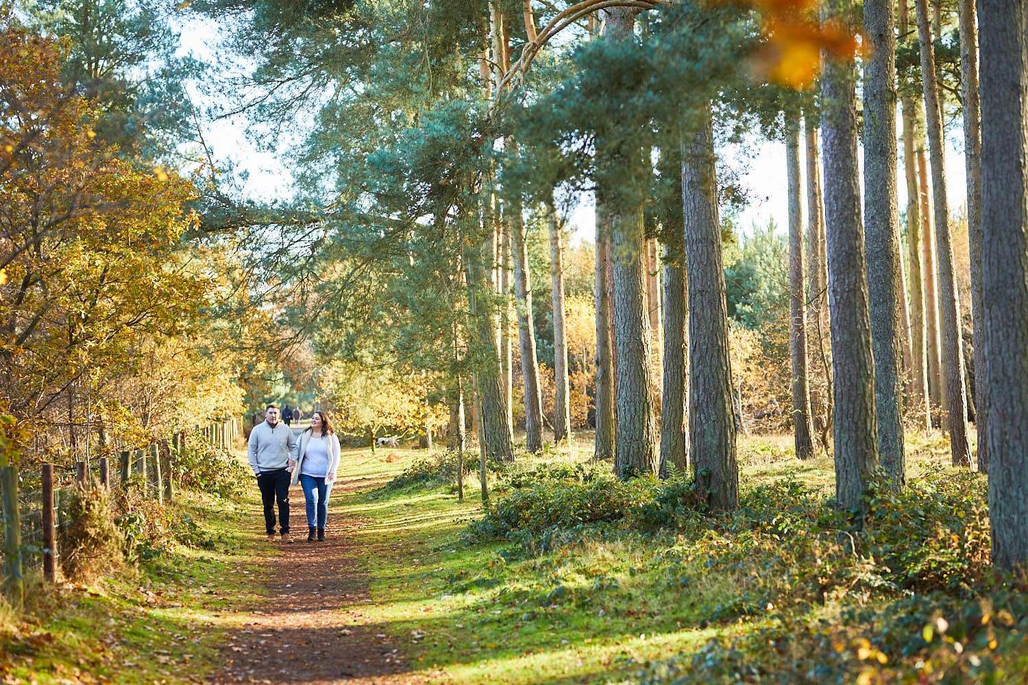 A couple walk away from the camera in Woodhall Spa woodland on a winter engagement photoshoot.